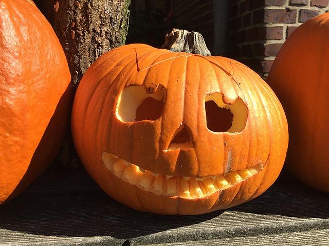 pumpkin-1423469_640