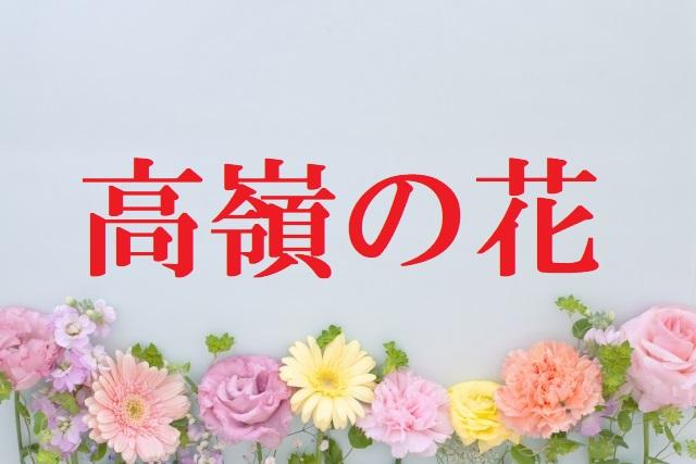 高嶺と花[無料視聴方法]ドラマ2話ネタバレ!花にキ …